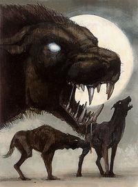 psy czarnego